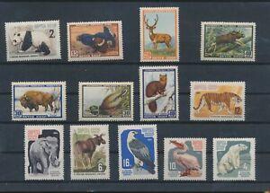 LN30462 Russia animals fauna flora wildlife fine lot MNH