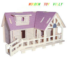 New Wood Assembly DIY toy for 3D wooden model puzzles of Villy