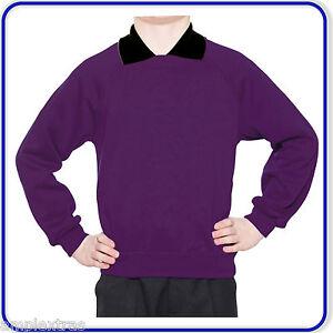 School Jumper Sweatshirt Pullover Boys Girls Kids School Uniform Age 3-13 (0600)