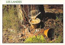 BT8471 Les Landes le pot de resine          France