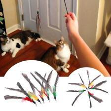 New listing 5Pcs Diy Natural Feather Cat Toy Da Bird Refills Interactive Teaser Sticks