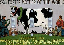 The Foster Mother of the World - Heffer Decorative Switch Plate *Free Shipping*