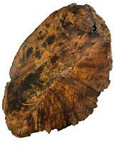 "Beautiful Chechen Burl Slabs, Bowl Blanks, Turning Wood, Lathe 8""x8""x3"" , #146"