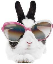 aufkleber sticker wand kochen kind zimmer dekoration tier kaninchen brille