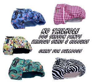 NO TAILHOLE Washable Dog Season Diaper Nappy Pants - Bulldog - Various Styles