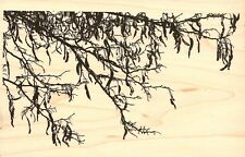 TREE BRANCH Wood Mounted Rubber Stamp IMPRESSION OBSESSION J16304 New