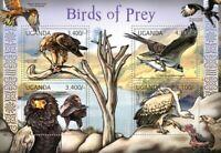 Uganda – African Birds of Prey – Tawny Eagle, Bateleur, Osprey 21D-003