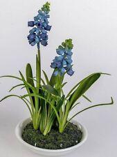 Kunstpflanze Muskari im Keramiktopf blau, 18 cm, ideale Badezimmer Deko, Formano