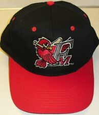 Fargo Moorhead Redhawks Minor League Vintage 90s Original Snapback hat New!!--