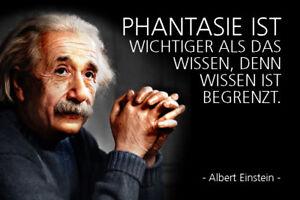 Albert Einstein Spruch 22 Blechschild Schild gewölbt Tin Sign 20 x 30 cm R0363