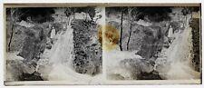 Forêt de Fontainebleau Photo Plaque de verre Stereo Negatif Vintage LH4