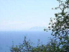 Ferienwohnung in Korsica Talasani mieten