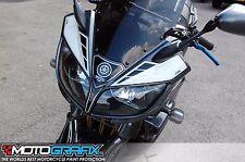Yamaha Fazer 1000 FZS 01 02 03 04 05 Front Fairing Number Board 3D Gel Protector