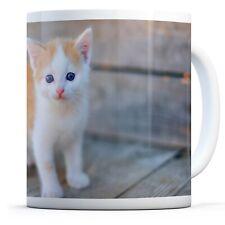Cute Ginger Kitten - Drinks Mug Cup Kitchen Birthday Office Fun Gift #15844