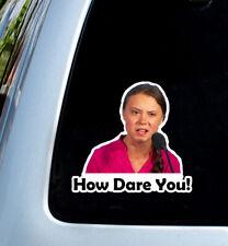 How dare you ! meme Greta Thunberg decal car sticker window bumper jdm kdm honda