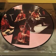 Bruce Springsteen Picture Disc (LP)