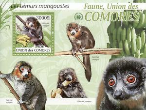 Comoros Wild Animals Stamps 2009 MNH Mongoose Lemurs Monkeys Fauna 1v S/S