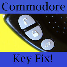 Holden Commodore Key Buttons VS VT VX VY VZ Silver/Light Grey Set