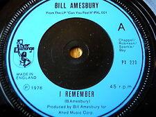 """BILL AMESBURY - I REMEMBER  7"""" VINYL"""