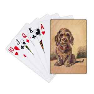 Dachshund Wire Haired Pack of Laminated Playing Cards & Case Unique Novelty Gift