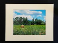 11 X 14 Photo in matted - signed by photographer Marie Whitton- Field/Pasture