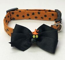 Halloween Scary Cat Dog Collar Size XS-L by Doogie Couture