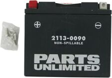 AGM Maintenance Free Battery 215CCA 12V 10Ah Factory Activated