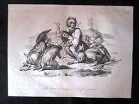 Incisione d'allegoria e satira Messina, Ferdinando di Borbone Don Pirlone 1851