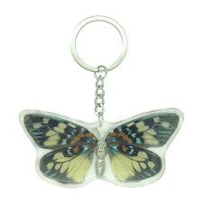 Real Satsuma Nishiki Butterfly Keyring