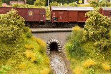 """Noch 58296 HO aguaducto"""" Túnel """" # NUEVO EN EMB. orig. ##"""