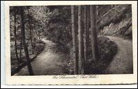 Schwarzatal Thüringen Postkarte 1929 gelaufen Partie im Schwarzatal ab Werdau