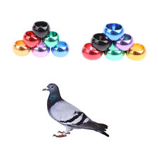 10 Pcs Pet Bird Rings 8mm 10mm Aluminium Pigeon Rings Training Identification