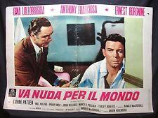 FOTOBUSTA CINEMA- VA NUDA PER IL MONDO-G. LOLLOBRIGIDA-1961-DRAMMATICO/ROMANTICO