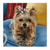 Dog Diy 5D Diamond Painting Embroidery Cross Stitch Handcrafts Kit Home Deco 3S2