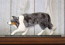 Border Collie Dog Figurine Sign Plaque Display Wall Decoration Blue Merle