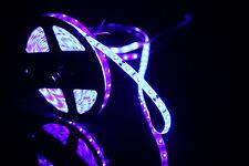 5M Blue Purple LED Strip Light Waterproof 300led 440-450nm for Fish Aquarium