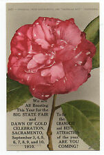 1910 Postcard Advertising Dawn of Gold Celebration in Sacramento CA