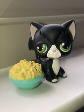 Hasbro Littlest Pet Shop #55 2004 Black Longhair Cat Real