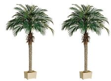 "2 Artificial 68"" Phoenix Palm Tree in Deco Pot Sago Date Coconut 70 4 5 6 Cycus"