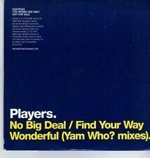 (DA320) Players, No Big Deal - 2006 DJ CD