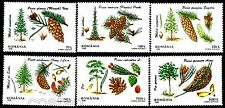 1996 Forest,Conifer Trees and Seeds,Conifere,Nadelbäume,Forest,Romania,5202,MNH
