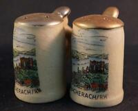 Vintage Bacharach Rhein Souvenir Salt and Pepper Shaker Set