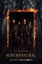 Supernatural Poster 24x36 USA Seller