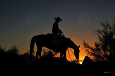 HORSE ART PRINT - Chasin the Sun by Barry Hart Cowboy Ranch Western Poster 13x19