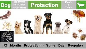 Extra / Large Dog Flea Tick & Wormer / De-wormer, 3 Months Protection, 3 Day Del