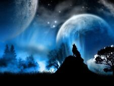 Fantasy Wolf - Blue Moon Earth Night Landscape Poster / Canvas Picture Print