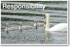 Responsibility: Do What Needs To Be Done - New Classroom Motivational Poster