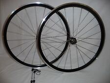 Kinlin XR31T wheels. Light, wide and tubeless ready
