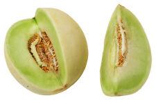 "Honeydew Melon *Heirloom*  (50 Seed's) ""FREE SHIPPING"" <NON GMO>"