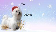 Maltese Dog Christmas Labels by Starprint - 42 peel off self adhesive labels